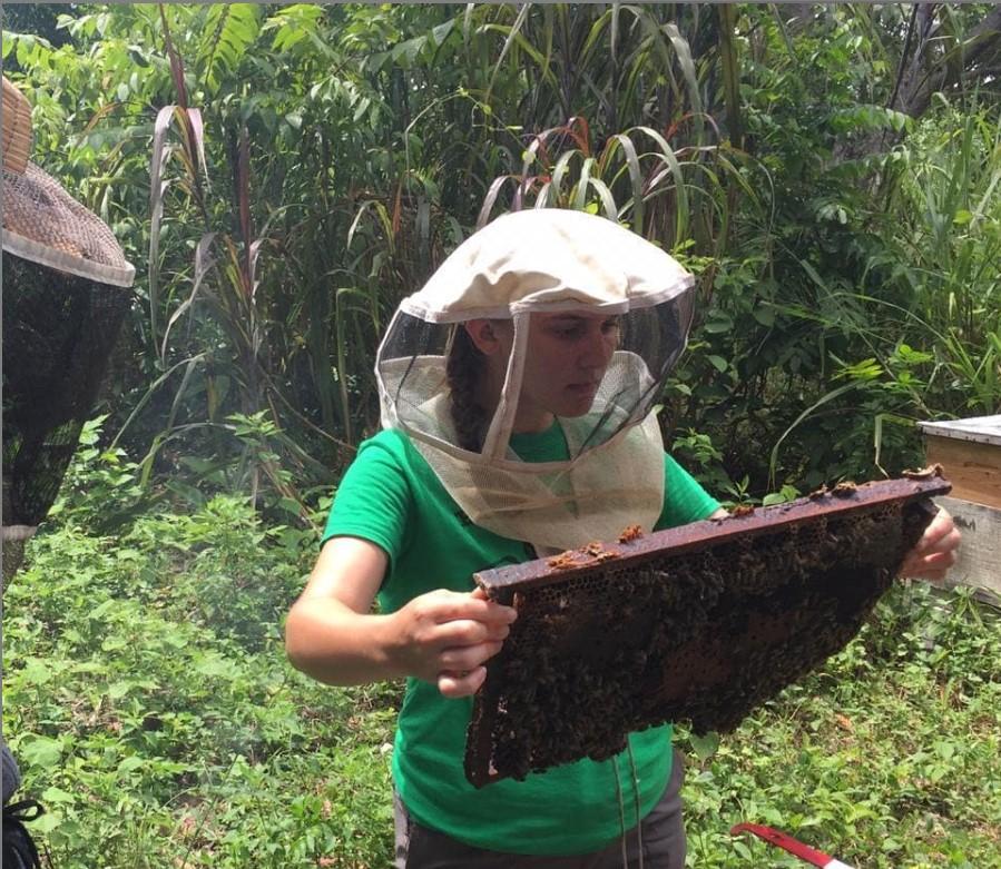 Beekeeper Bridget
