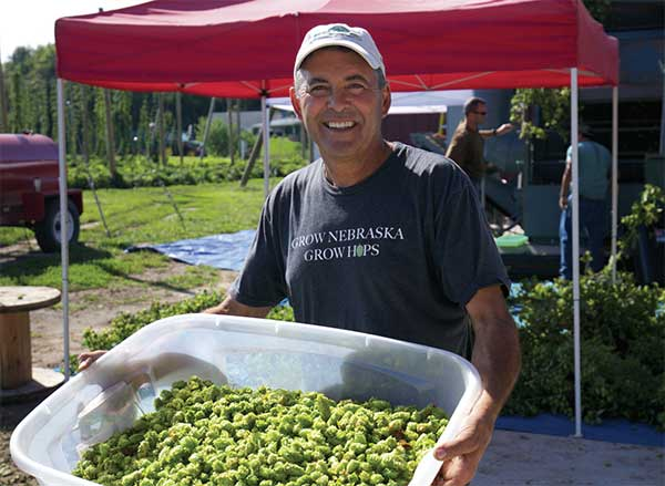 Bruce Wiles carrying harvested hops