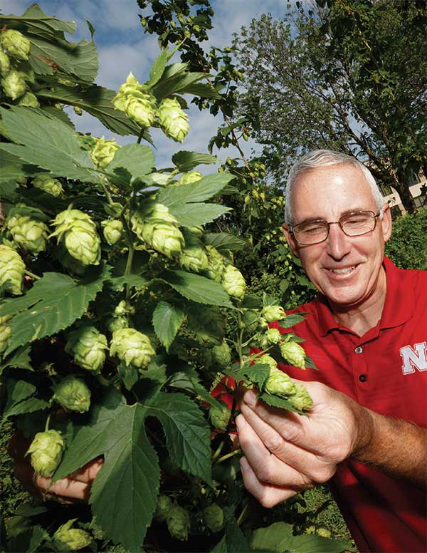 Stacy Adams studying hops crop