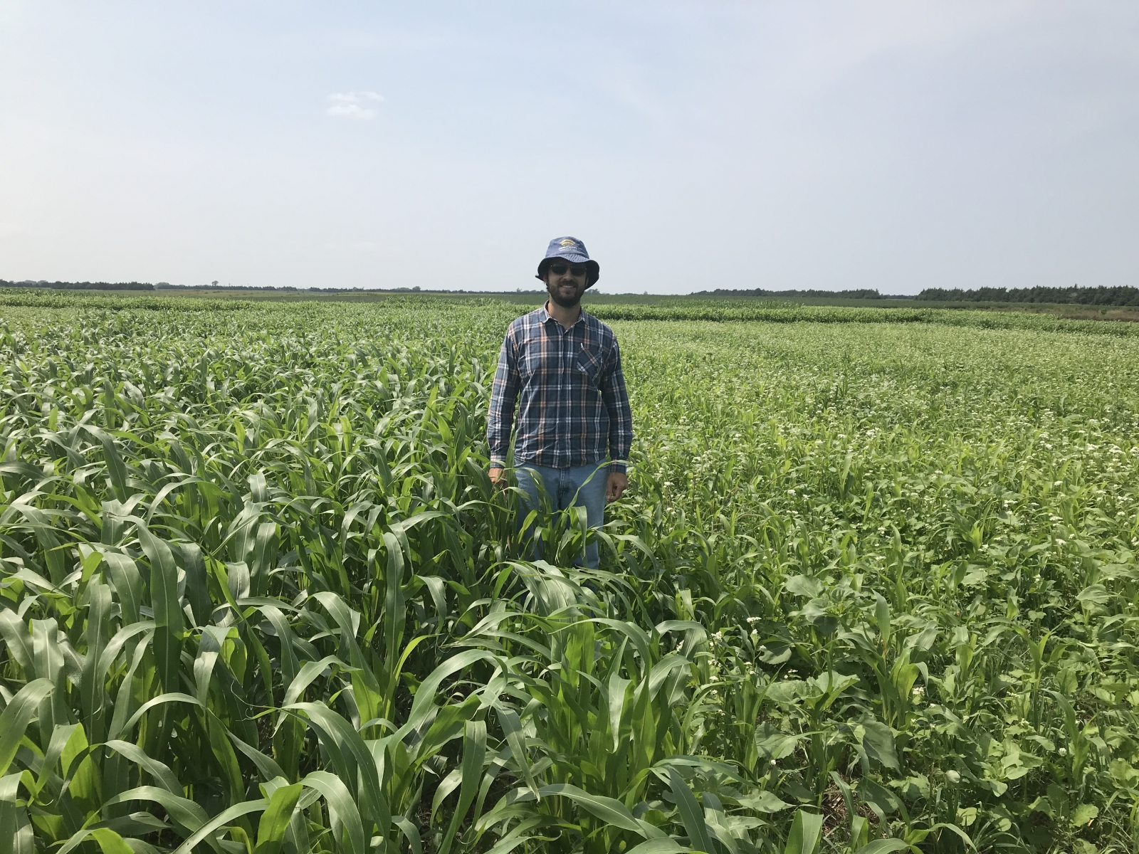 Graduating PhD student Alexandre Tonon Rosa stands in the middle of a field where he is doing cover crop research