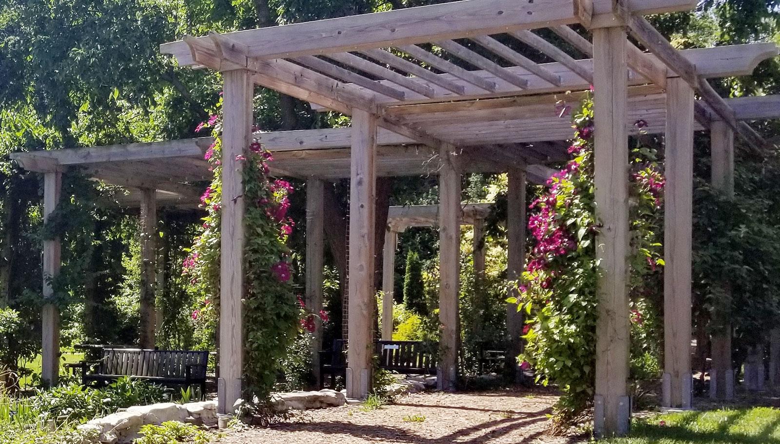 East Campus Arboretum